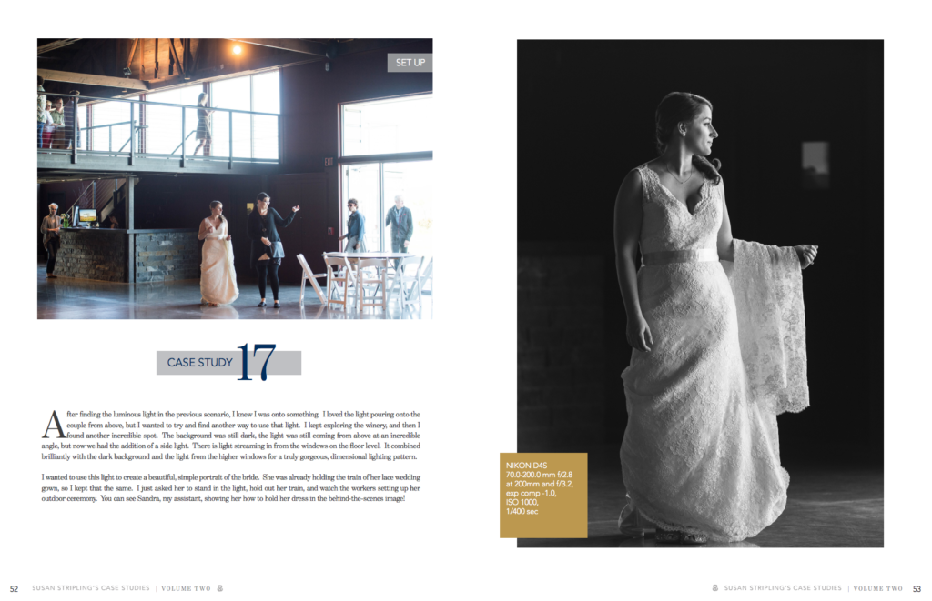 wedding photography books by susan stripling